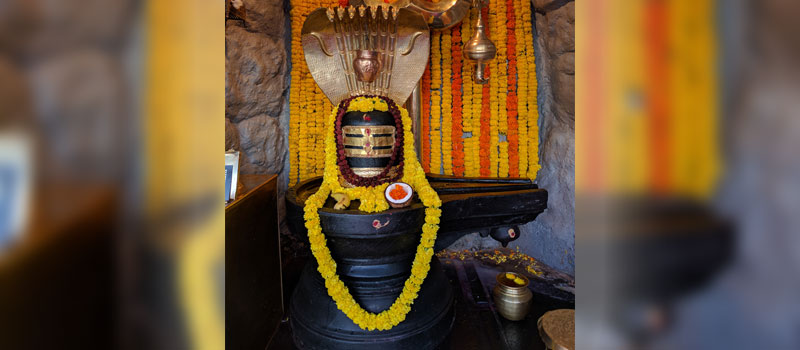 Maha Shivratri Celebrations at the Shivoham Shiva Temple